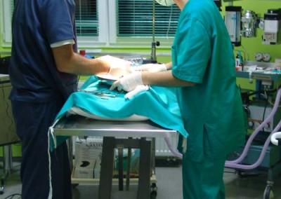 operacija_ljubimca